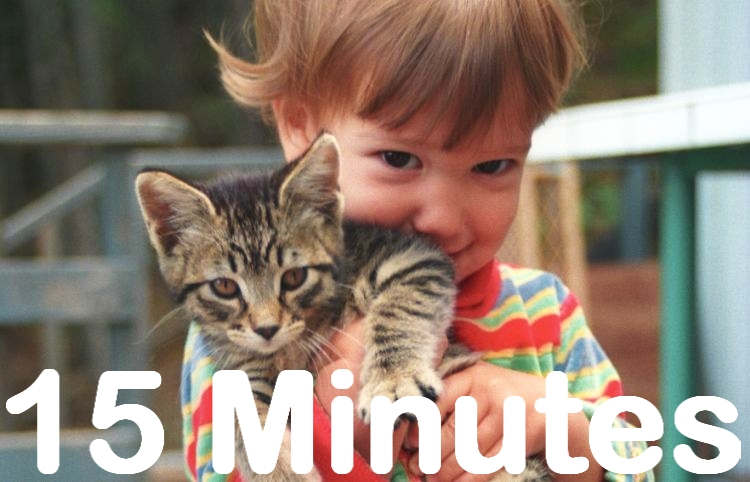 15 MIN SKYPE / PHONE / EMAIL PARENTING GUIDING SESSION